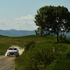Dallamano-Zorzi/Peugeot 208 R2 - Liburna Terra 2016